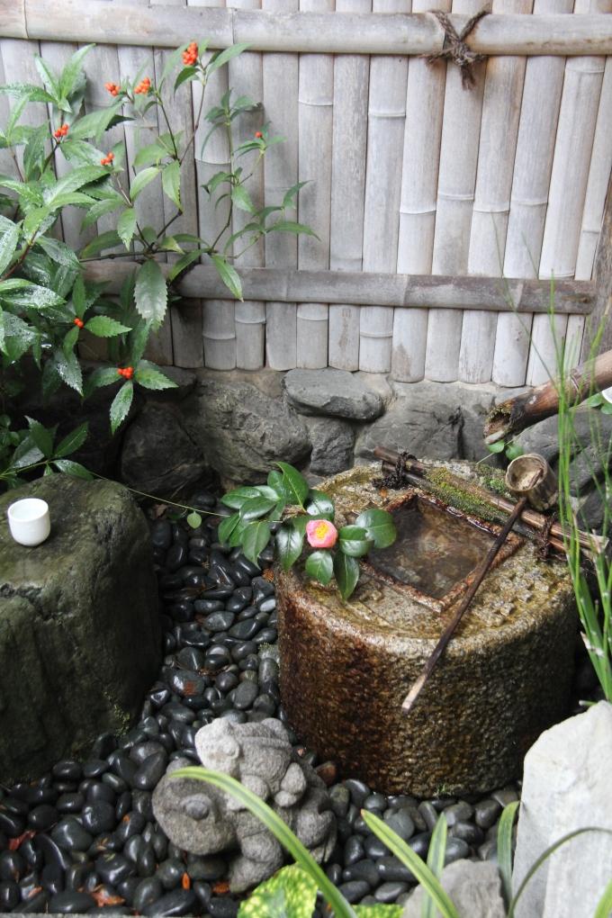 Zenbu Zen Tour 2017(II)