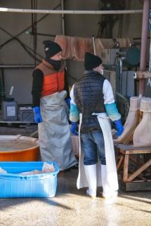 Sake brewers Japan
