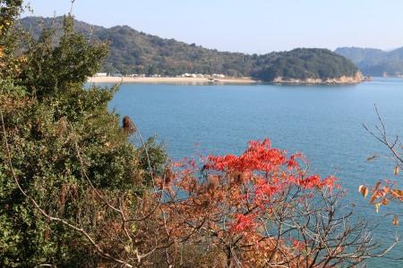 Naoshima japan